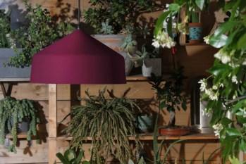 Ezare - indoor et outdoor