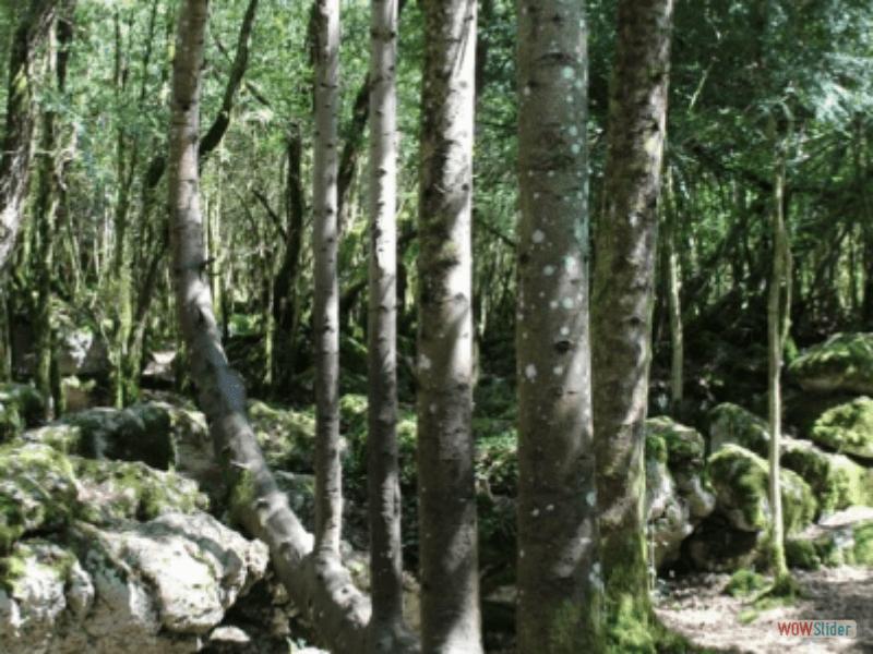 Ariége_J4 (10)