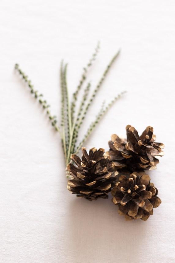 DIY - Couronne Végétale - Comment fabriquer une couronne de Noël | Crédit-Blog La Mariée Sous Les Etoiles