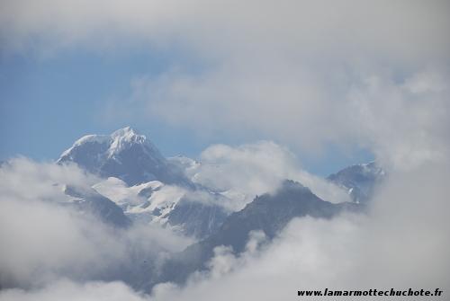 954_Fox_Glacier