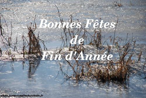 joyeuses_fetes_2015_500