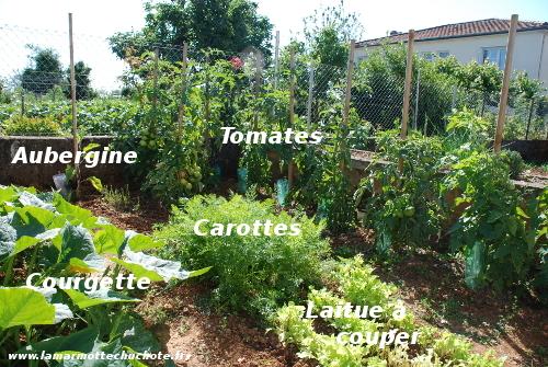 jardin_1