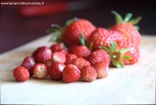 fraise_2017