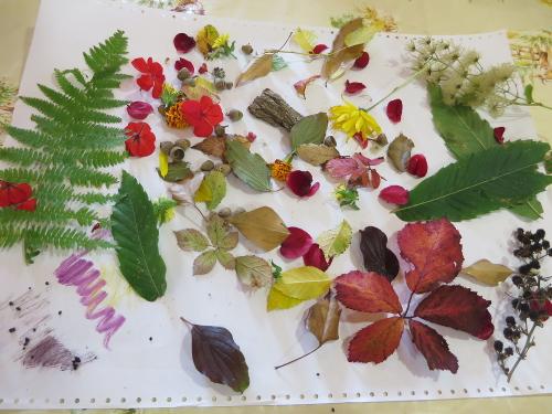 Peinture cuisine cosm tiques la d couverte du - Quelles sont les plantes que l on peut bouturer ...