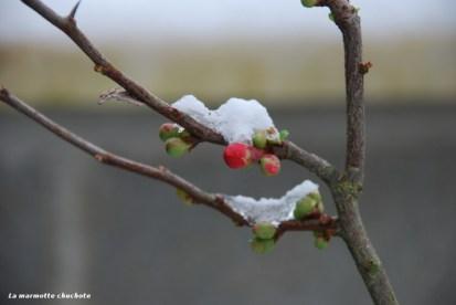 11_neige_02_18