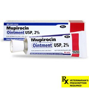 Mupirocin Ointment 2% Dog Skin Abscess   Lambert Vet Supply