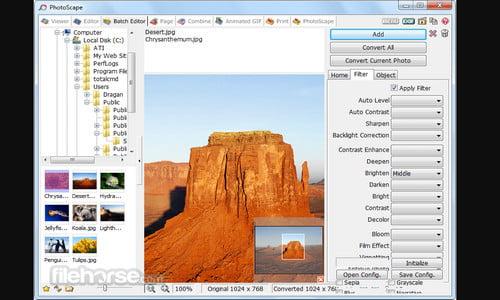 Software PHOTOSCAPE