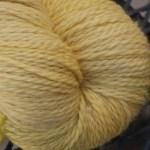 Baby Llama - Yellow Cloudberries