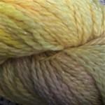 Baby Llama - Buttercup