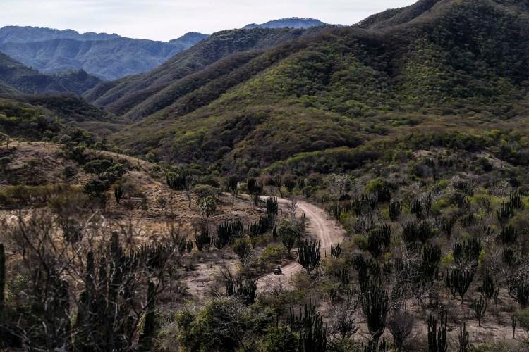 Vista de las montañas de Badiraguato(Photo by RASHIDE FRIAS / AFP)