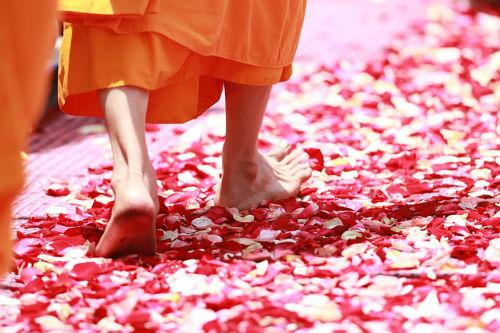 mente-meditazione-le-meditazioni-dellanima-medita-facilmente-lucia-giovannini