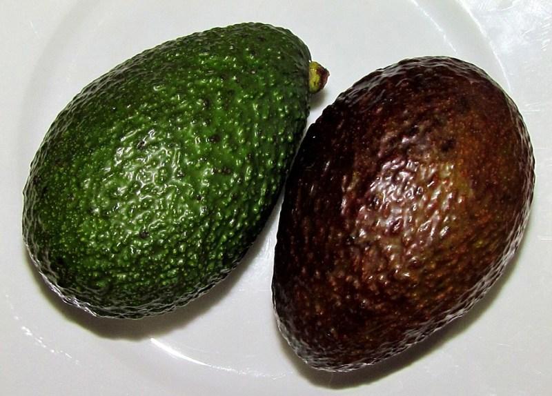 Benefici avocado Hass, bacca antica che fa bene e allunga la vita