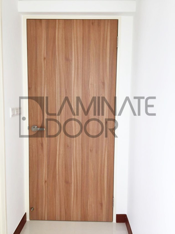 HDB Laminate Fire Rated Door
