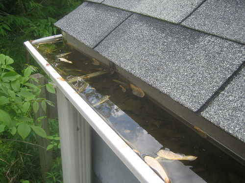 Clogged-Gutter-on-Home