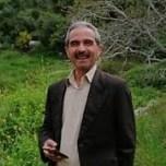 محمد محرز