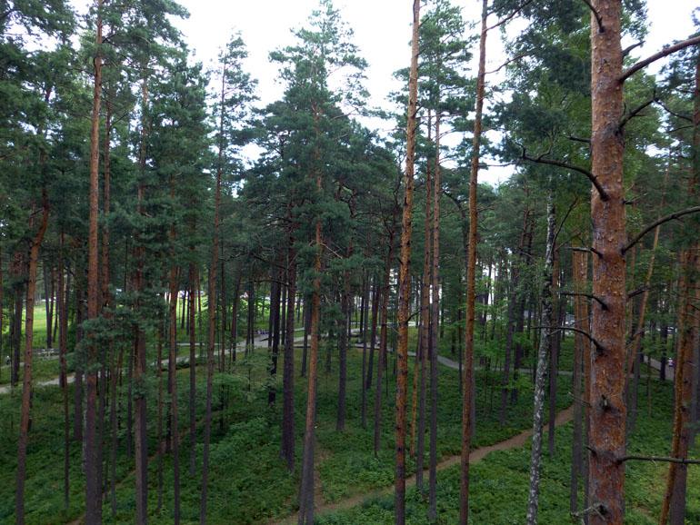 parque-de-jurmala-letonia-2