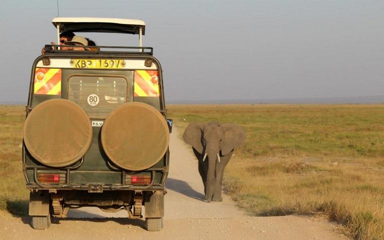 safari-turismo-responsable