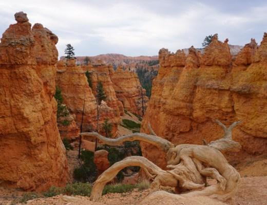 interior del bryce canyon