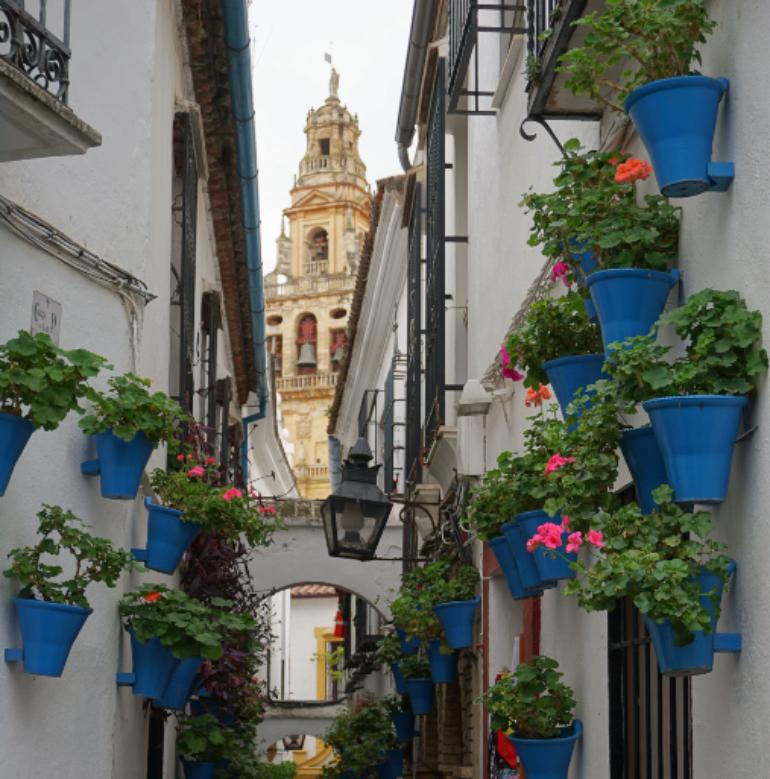 callejón de las flores