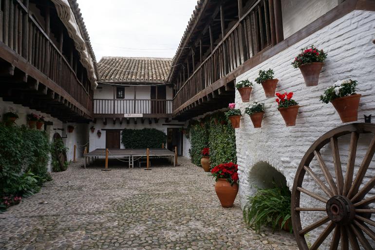 patio cordobés con paredes encaladas