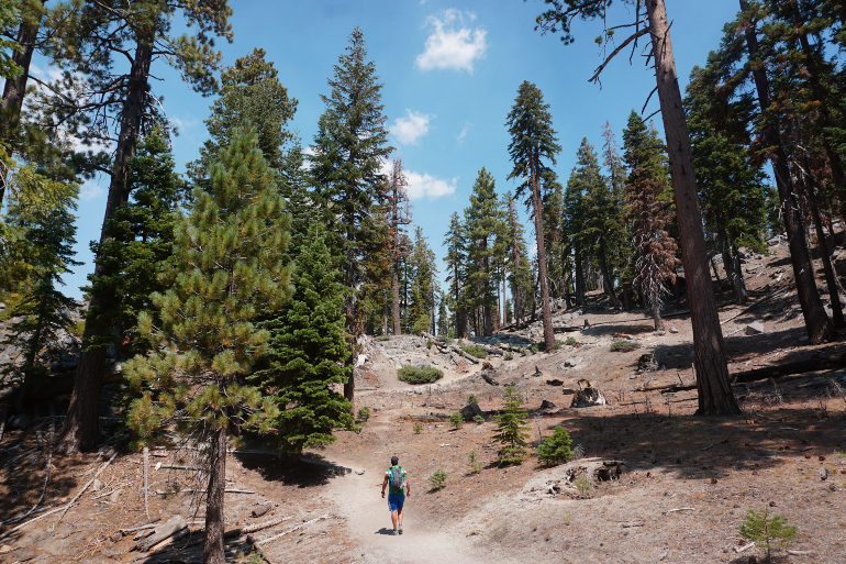 Alrededores de Devils Postpile National Monument