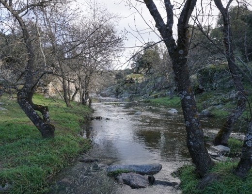 rio perales
