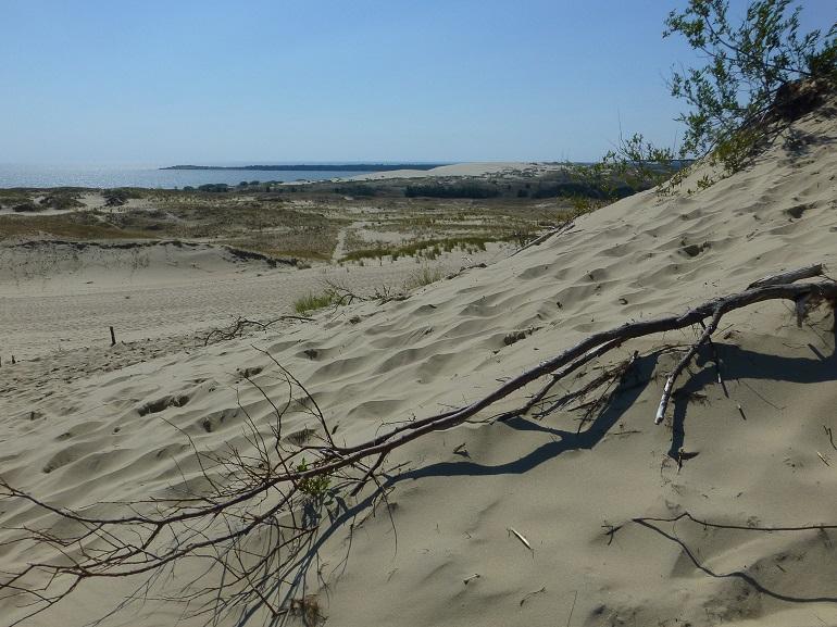 Dunas de arena del Istmo de Curlandia