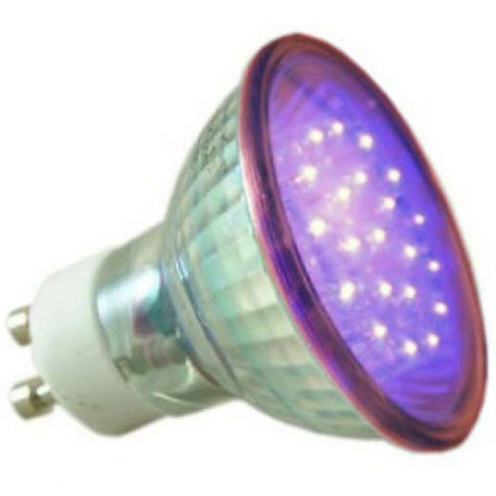 Large Globe Light Bulb