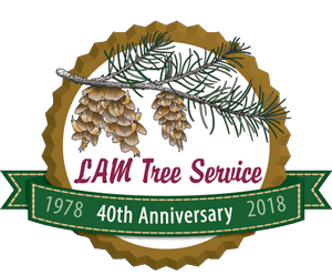 LAM Tree 40th anniversary logo