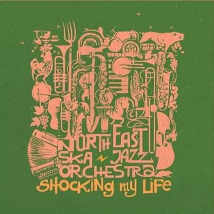 Shocking My Life è il nuovo singolo della North East Ska Jazz Orchestra