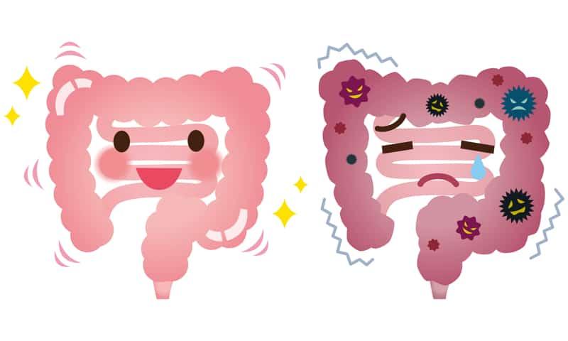 Натрупани токсини в дебелото черво
