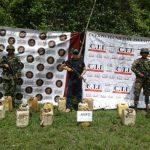 Estudiantes de la Nacional atacados por abejas en Aipe 3 14 agosto, 2020