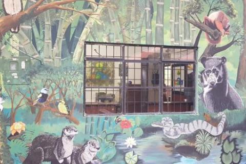 El mural que expone la fauna silvestre del Huila 6 27 mayo, 2020