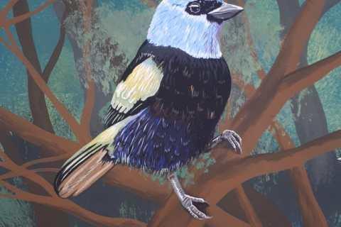 El mural que expone la fauna silvestre del Huila 9 27 mayo, 2020