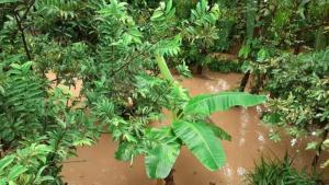 Invierno provocó emergencia en Yaguará 7 5 julio, 2020