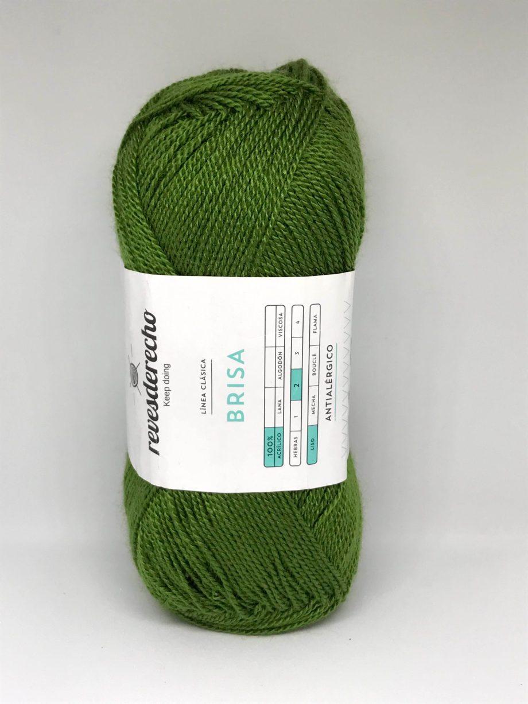 Hila brisa verde palta