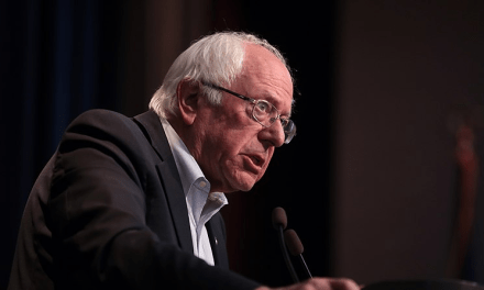 Bernie Sanders suspends campaign 'until further notice'