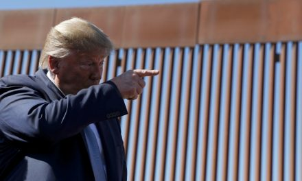 Smugglers are using handmade $5 'camouflage' ladders to easily scale Trump's border wall