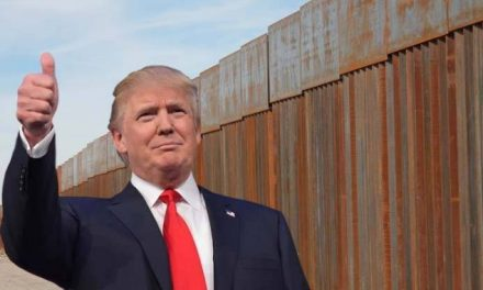 Building the border wall will help control the spread of coronavirus, Trump declares