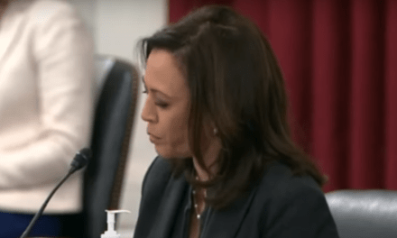 Sen. Harris slams GOP chair for pursuing witch hunt against Hunter Biden