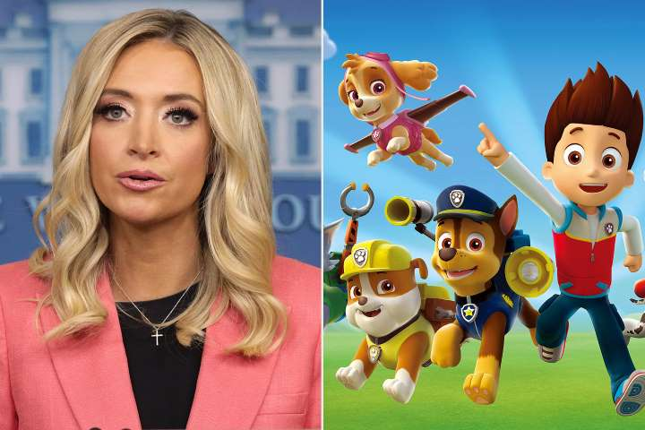 White House Press Secretary Kayleigh McEnany gets humiliatingly fact-checked by a cartoon