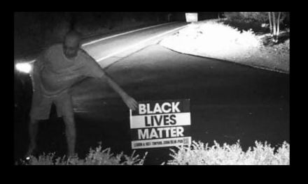 Trump minions stealing and vandalizing BLM and Biden signs
