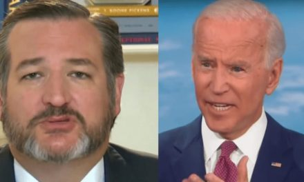 Ted Cruz winds up owning himself when he tries to diss Joe Biden