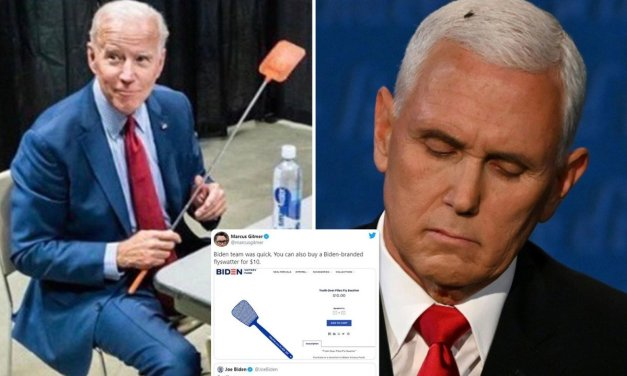 Biden-Harris campaign sells out of 'truth over flies' swatters in brilliant trolling of Pence