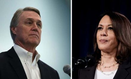 Georgia senator David Perdue gets major blowback for racist pronunciation of Kamala Harris' name