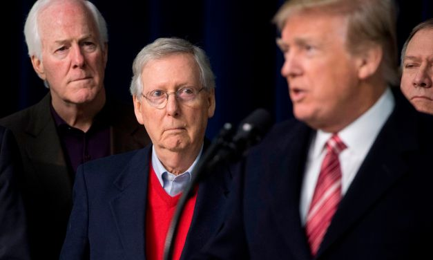Proving he's learned nothing, Mitch McConnell says he'd 'absolutely' back Trump in 2024