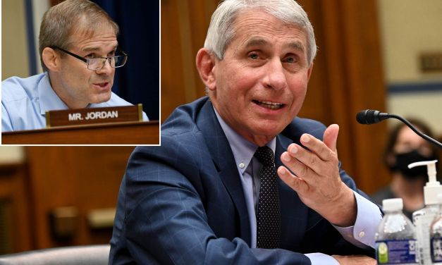 Jim Jordan tries and fails to troll Dr. Fauci on Twitter
