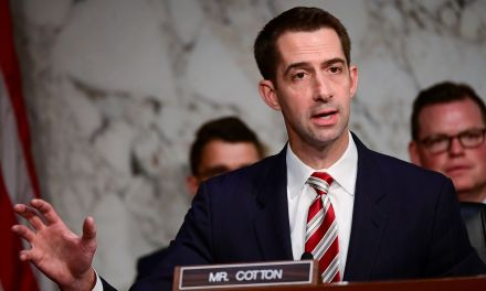 Tom Cotton tried to destroy the credibility of a Biden judicial nominee – He failed miserably