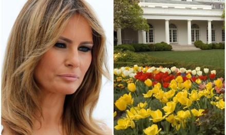 Melania attacks presidential historian for criticizing her Rose Garden renovation