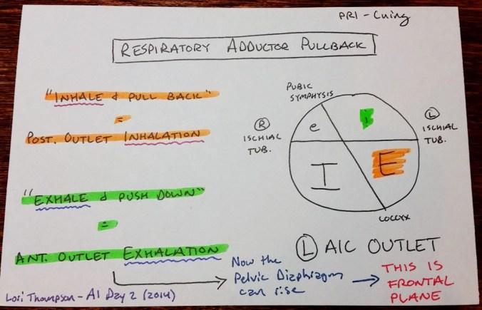respiratory adductor pullback